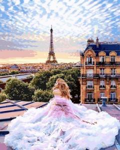 Картины по номерам Парижские мечты