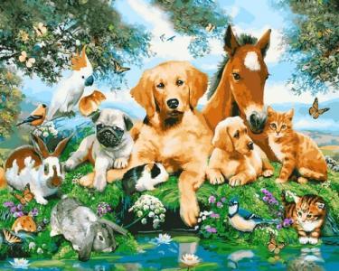 Картины по номерам Домашние животные