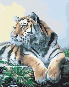 Картины по номерам Гордый тигр