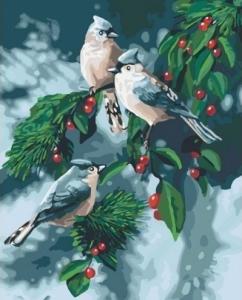 Картины по номерам Зимние птицы