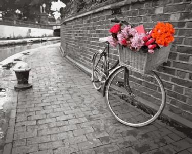 Картины по номерам Велосипед с цветочной корзиной