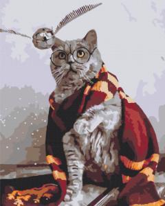 Картины по номерам Котик ловец снитча