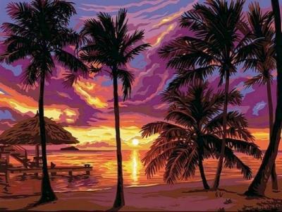 Картины по номерам Закат в тропиках