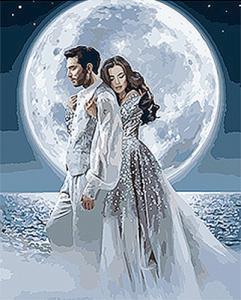 Картины по номерам Под лунным сиянием