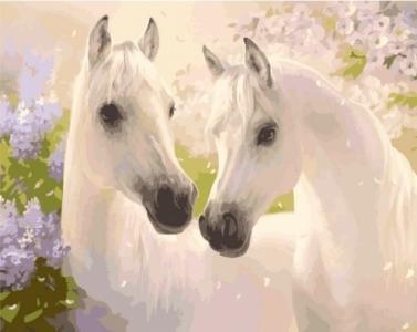 Картины по номерам Пара коней