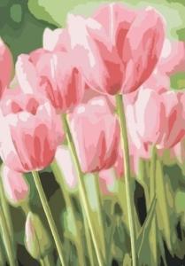 Картины по номерам Весенние тюльпаны