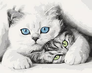 Картины по номерам Котята