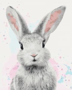 Картины по номерам Сахарный кролик