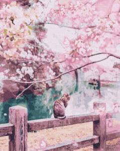 Картины по номерам Котик в цветущей сакуре