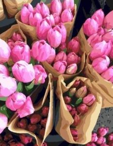 Картины по номерам Голландские тюльпаны
