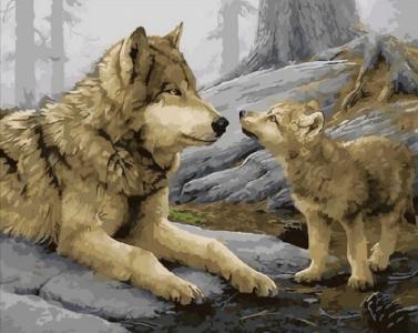 Картины по номерам Волчонок