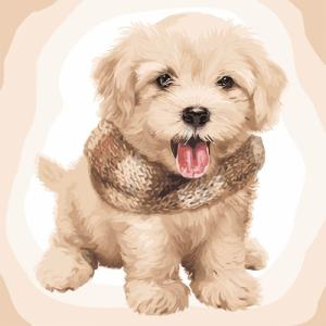 Картины по номерам Пушистый щенок