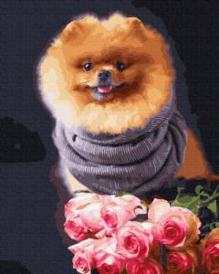 Картины по номерам Акита в цветах