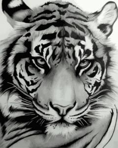 Картины по номерам Величественный тигр