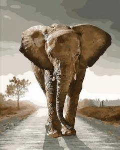 Картины по номерам Королевский слон