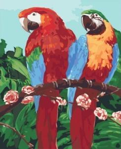 Картины по номерам  Королевские попугаи