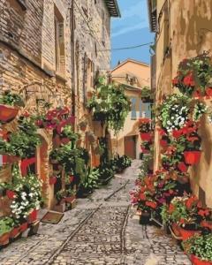 Картины по номерам Цветущая улочка