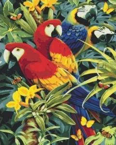 Картины по номерам Разноцветные попугаи