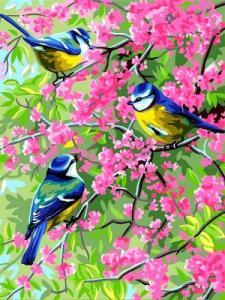 Картины по номерам Весенние синички