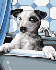 Картины по номерам Собачка на купании