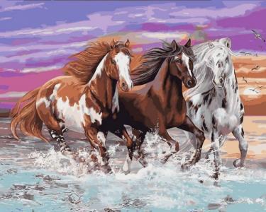Картины по номерам Дикие лошади
