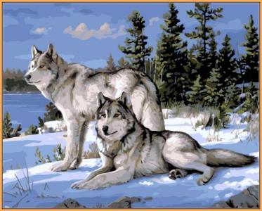 Картины по номерам Волки на снегу (в раме)