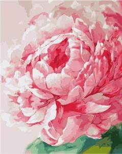 Картины по номерам Розовый акварельный пион