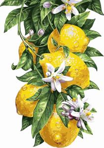 Картины по номерам Лимоны