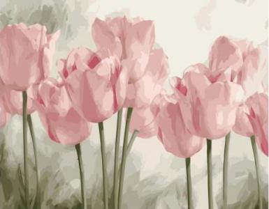 Картины по номерам Нежные розовые тюльпаны