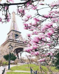 Картины по номерам Весенний Париж