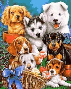 Картины по номерам Озорные щенки