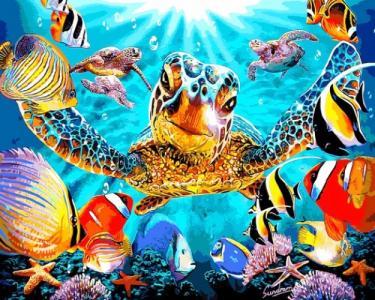 Картины по номерам Черепахи и рыбки