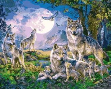 Картины по номерам Стая волков