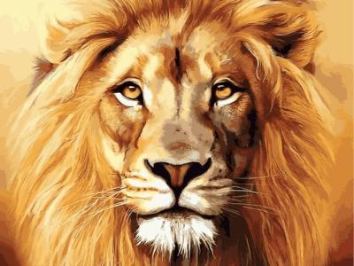 Картины по номерам Гордый лев