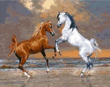 Картины по номерам Лошади на берегу океана