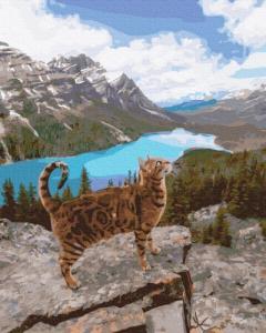 Картины по номерам Кот оцелот среди гор