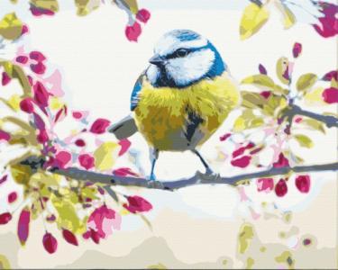 Картины по номерам Весенняя синичка