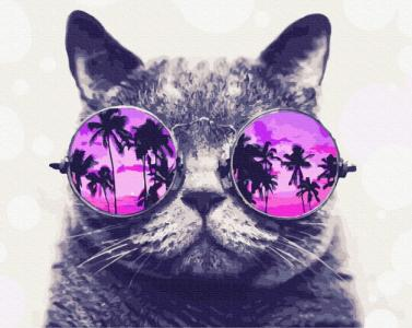 Картины по номерам Котик на Майями