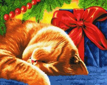 Картины по номерам Сонный кот