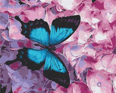 Картины по номерам Бабочка на цветах