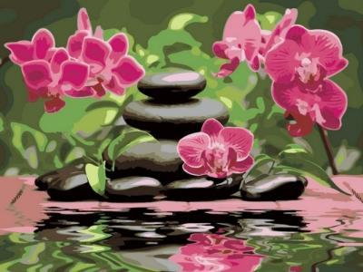 Картины по номерам Лиловые орхидеи