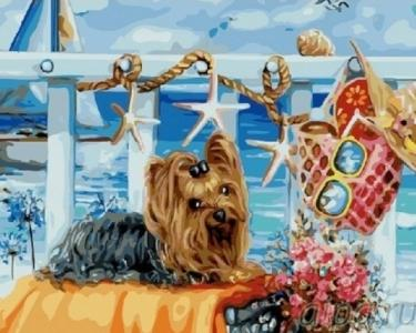 Картины по номерам Йоркширский терьер на пляже