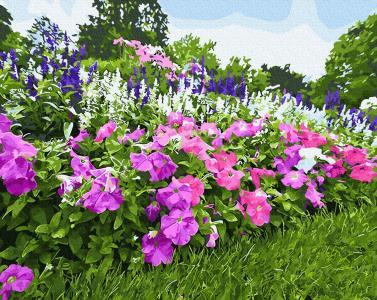 Картины по номерам Квітуча петунія