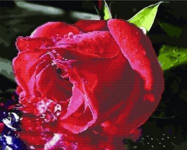 Алмазные картины 2 в 1 Красная роза